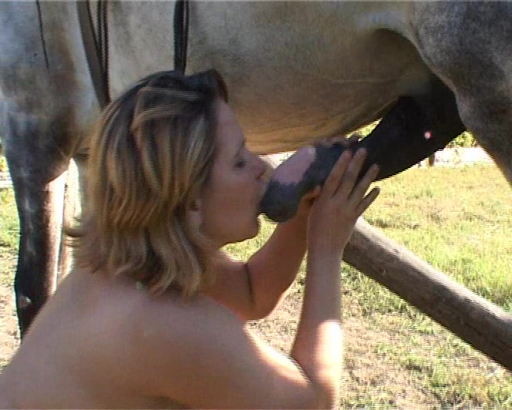 apple bottom never before seen slut gets drilled by a horse in this excellent animal sex movie